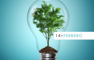 February 14: World Energy Day